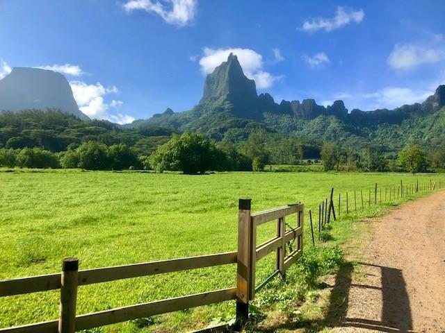 画像: バリハイ山