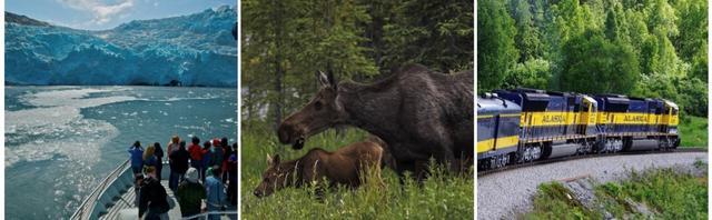 画像: 左:プリンスウィリアム湾氷河クルーズ 中:デナリで出会えるかもしれない野生動物 右:アラスカ鉄道