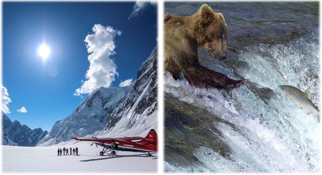 画像: 左:デナリ遊覧飛行 右:カトマイ国立公園で鮭を捕るクマ