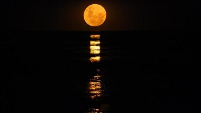 画像: 「月への階段」