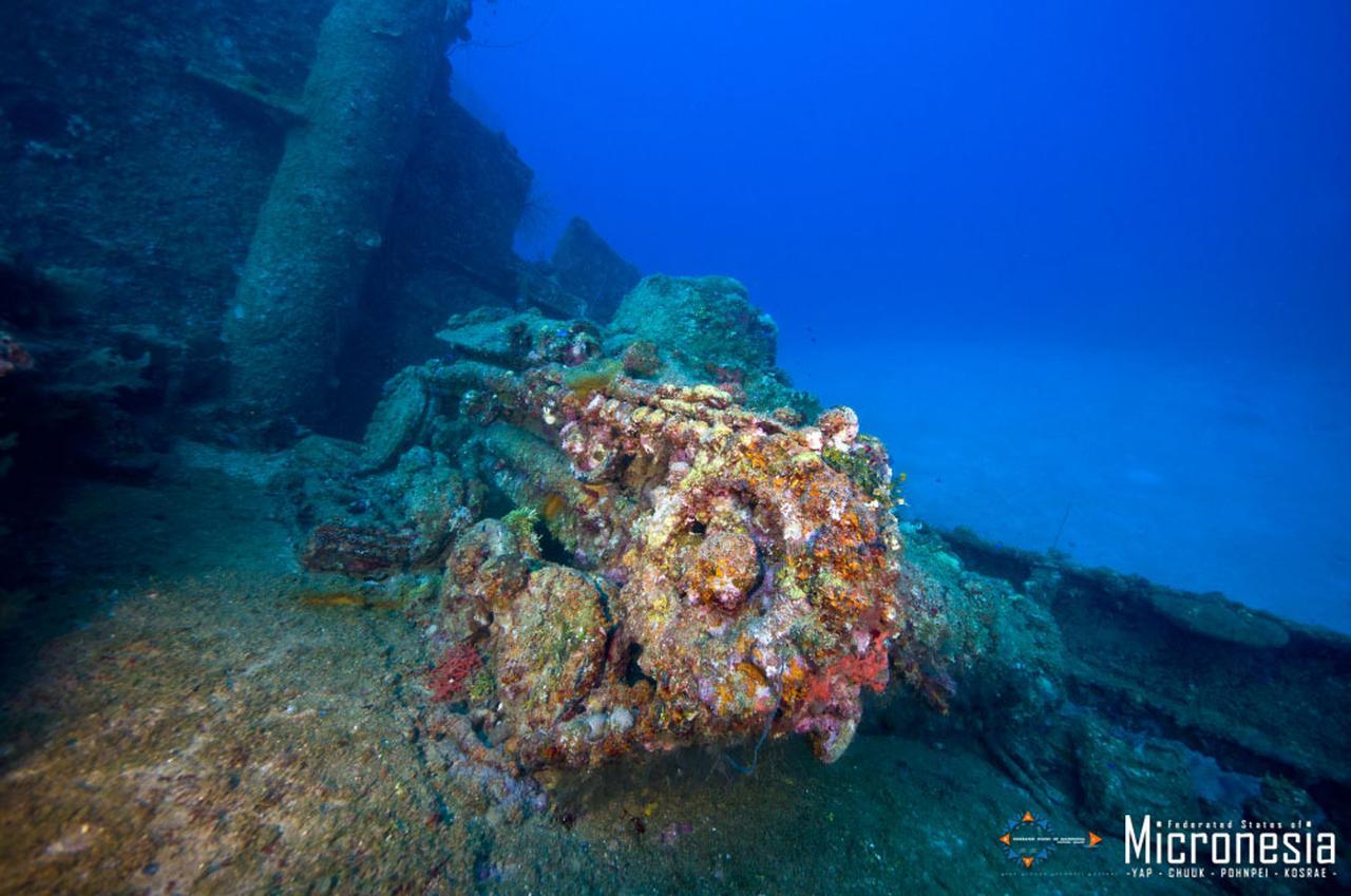 画像: 海中に沈む戦跡 (出典:ミクロネシア政府観光局)