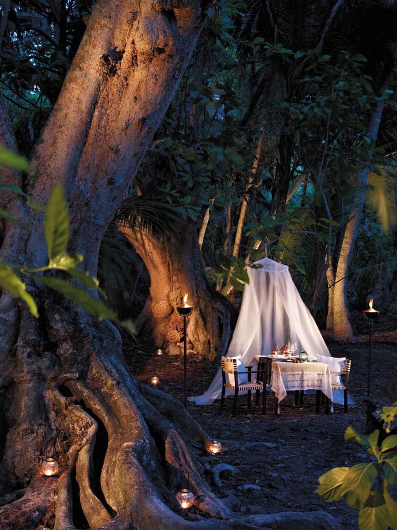 画像: 森の中の隠れ家ダイニング(一例)