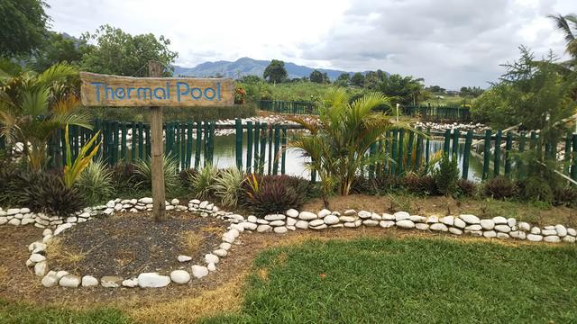 画像: 現地ではマッドプールと呼ばれている泥温泉
