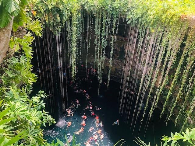 画像: 神秘の泉「セノーテ」はみんなの憩いの場です!(イメージ)