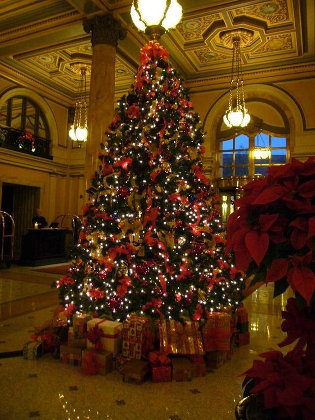 画像: ホテルのロビーに飾られるクリスマスツリー(イメージ)