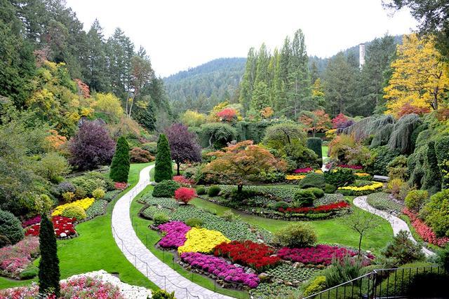 画像: 紅葉とお花を同時に楽しむことができるブッチャードガーデン(ビクトリア)
