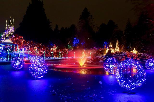 画像2: バンデューセン植物園のライトアップ(イメージ)