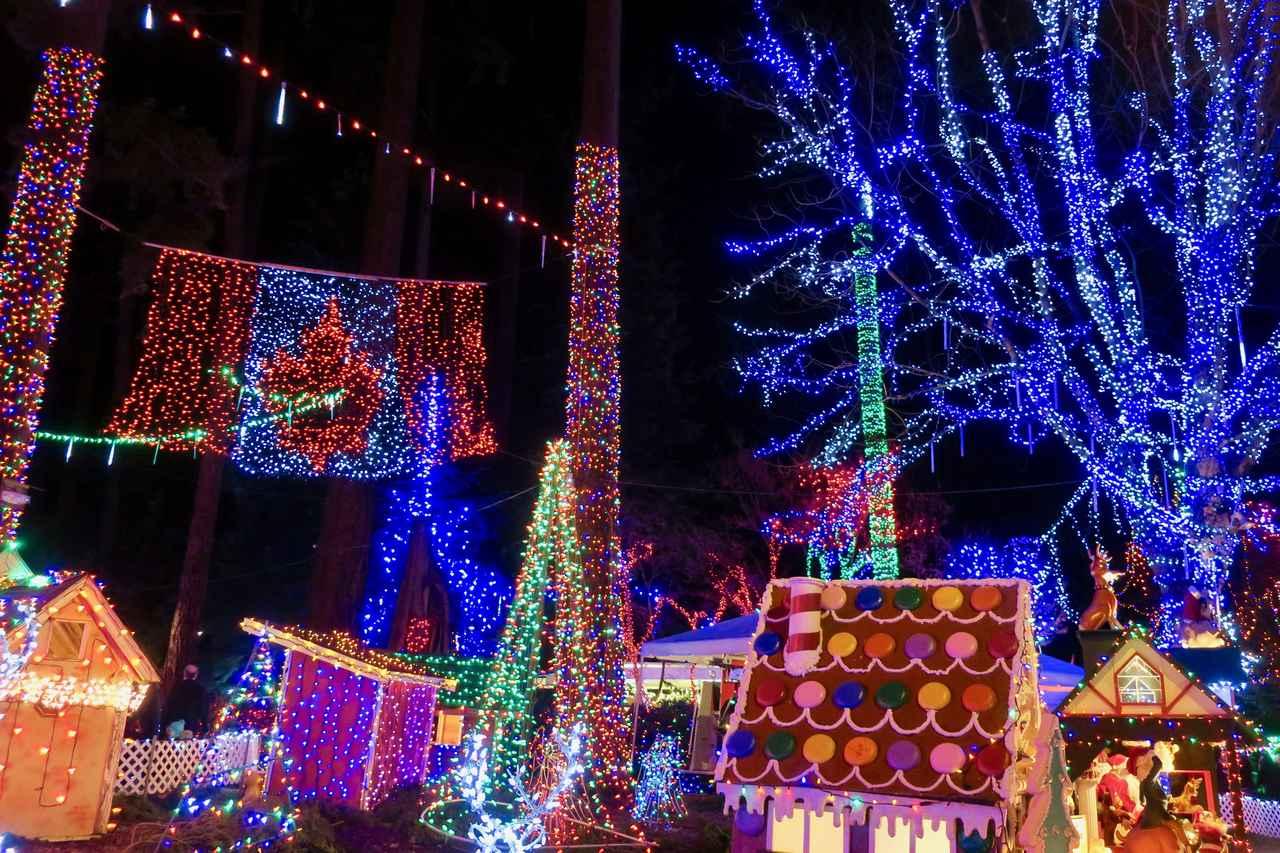 画像3: スタンレーパークのクリスマスイルミネーション(イメージ)