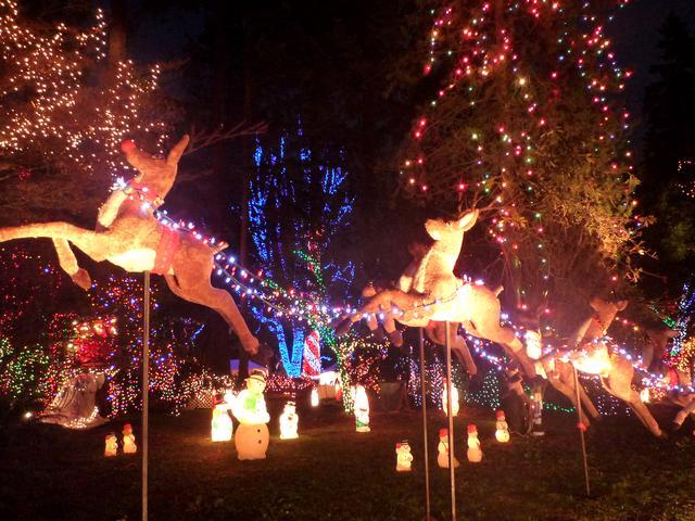 画像2: スタンレーパークのクリスマスイルミネーション(イメージ)