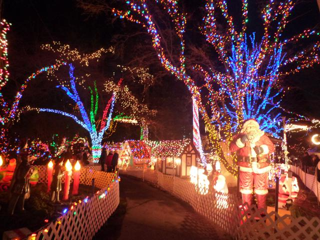 画像1: スタンレーパークのクリスマスイルミネーション(イメージ)