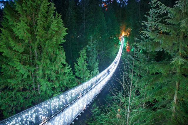 画像1: キャピラノ吊り橋のキャニオンライツ(イメージ)
