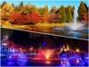 画像: 『往復直行便利用/季節を感じるカナダ バンクーバー・ビクトリア気軽に満喫6日間』 ビクトリア2連泊で滞在を満喫! クラブツーリズム