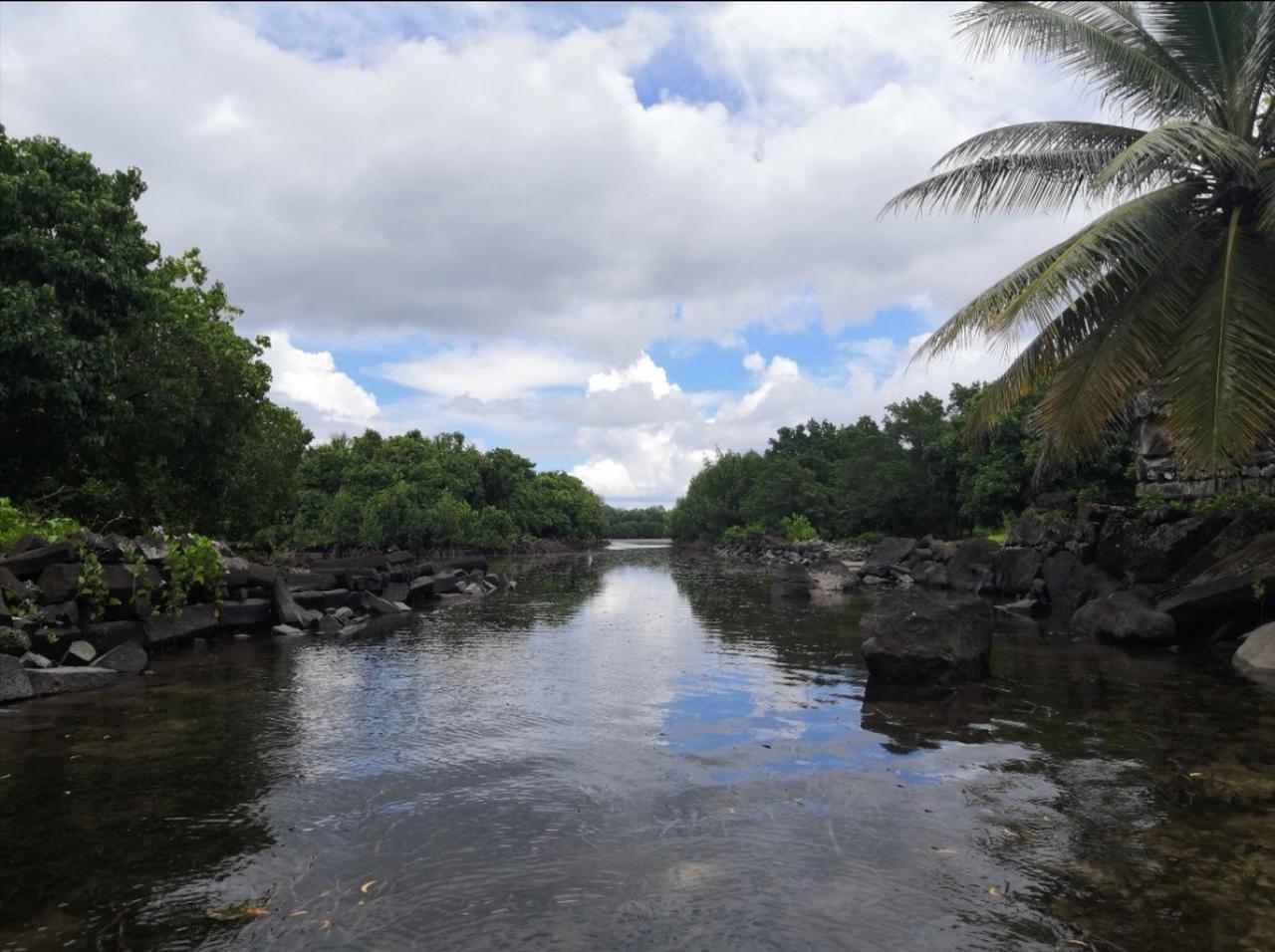画像: 水路の前後、奥全てが人工島