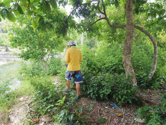 画像1: 5日目 夏島の戦跡と無人島巡り