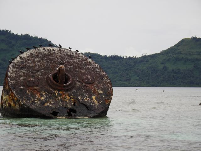 画像: 戦艦武蔵の係留ブイ。今では海鳥の足場に。