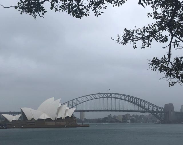 画像: オペラハウスとハーバーブリッジを望むミセスマッコーリーズポイント あいにくの天気でした…