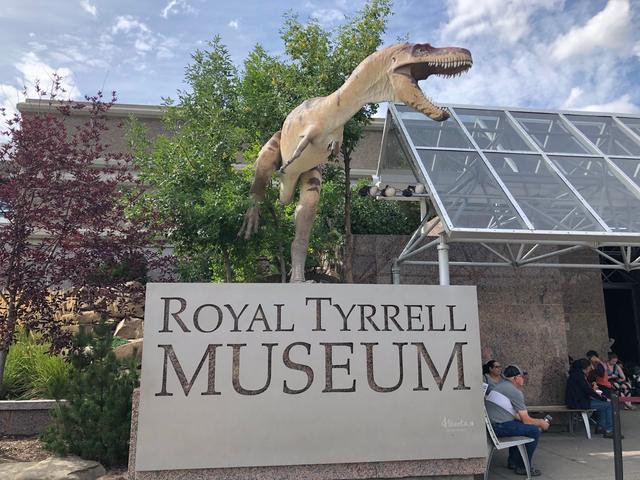 画像: ロイヤルティレル古生物博物館/弊社スタッフ
