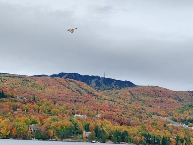 画像: 遊覧船からの紅葉の景色/弊社スタッフ和田撮影