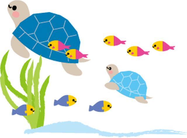 画像: モルディブの魚たち/イメージ