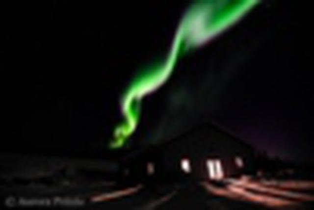 画像: 『<北米最高峰デナリ>に舞うオーロラを求めて アラスカ冬絶景7日間』<日本航空(JAL)利用>【18名様限定】|クラブツーリズム