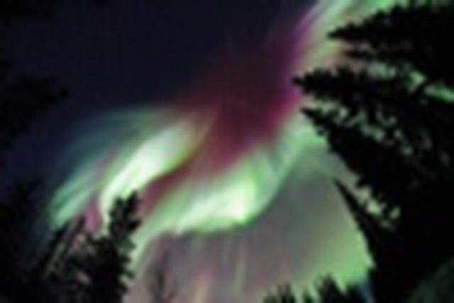 画像1: 『【12名様限定】日本航空指定(成田~シアトル)66度33分を越える世界・北極圏の村コールドフットへ アラスカ白銀絶景とオーロラ7日間』3/19発限定! クラブツーリズム