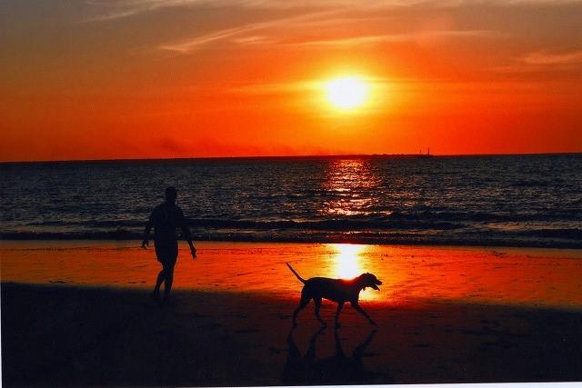 画像: ダーウィン・ミンディルビーチでは本当に美しい夕景をご覧いただけました(お客様N様撮影)