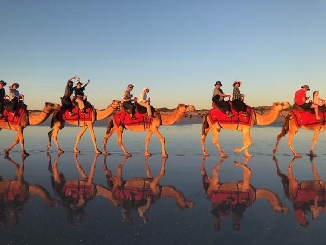 画像: <ハイキング入門>『カンタス航空利用(国際線区間)オーストラリアの知られざる秘境を訪ねる8日間』|クラブツーリズム