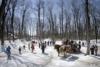 画像1: 『春の訪れを喜ぶ季節 カナダ・ナイアガラとメープル祭り6日間』<エア・カナダ往復直行便利用>3月限定企画/メープルタフィー体験も クラブツーリズム