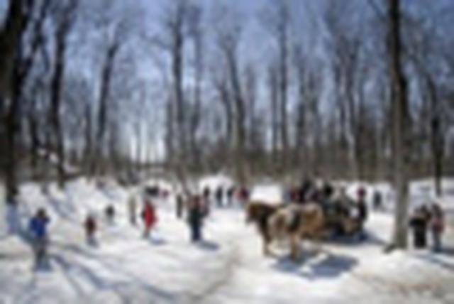 画像1: 『春の訪れを喜ぶ季節 カナダ・ナイアガラとメープル祭り6日間』<エア・カナダ往復直行便利用>3月限定企画/メープルタフィー体験も|クラブツーリズム