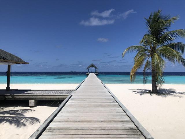画像: 【モルディブ】添乗員レポート♪女性おひとりビーチリゾート 当社1番人気!「大人女子のための優雅なモルディブ5日間」 - クラブログ ~スタッフブログ~|クラブツーリズム