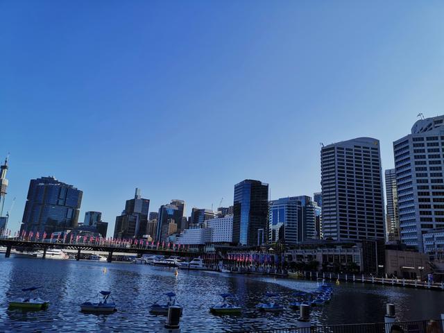画像: シドニー市内・ダーリングハーバー(2020/01/21 現地スタッフ撮影)