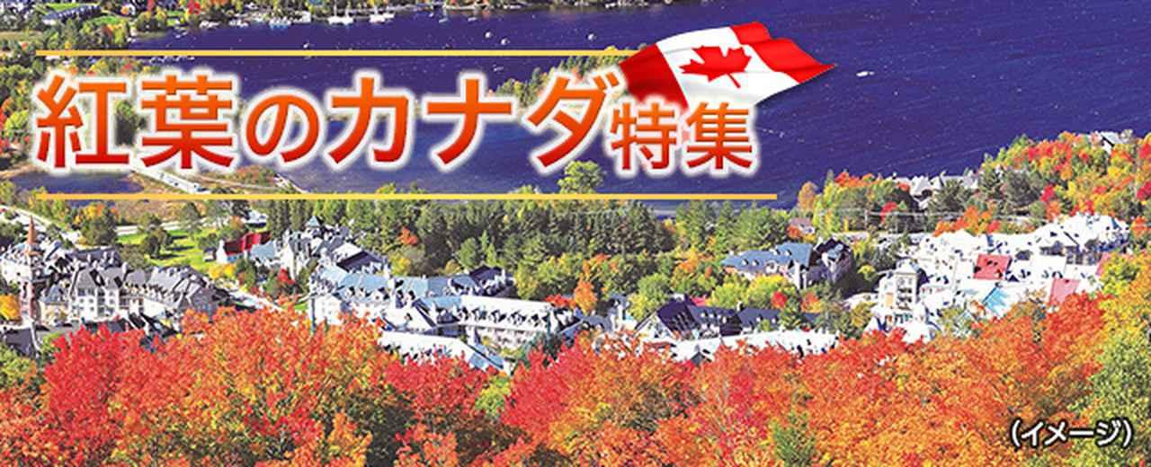 画像: 紅葉のカナダ旅行・ツアー・観光|クラブツーリズム