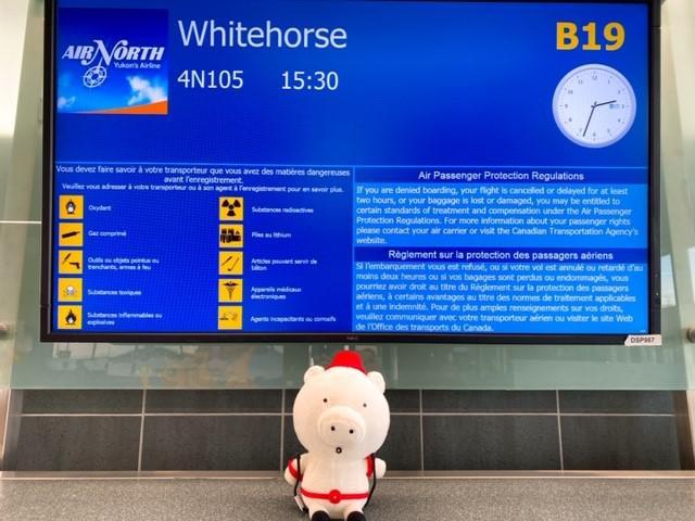 画像: いよいよ、チャーター便にてホワイトホースへ!/弊社スタッフ和田撮影