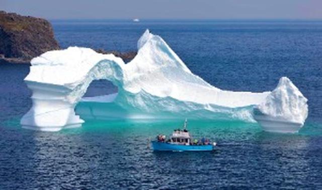 画像: ノーザン半島氷河クルーズ(イメージ)