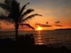 画像: 『添乗員同行/とことん満喫ハワイ2島5日間(エコノミークラスプラン)』コンパクトな日程でハワイ島とオアフ島へ|クラブツーリズム