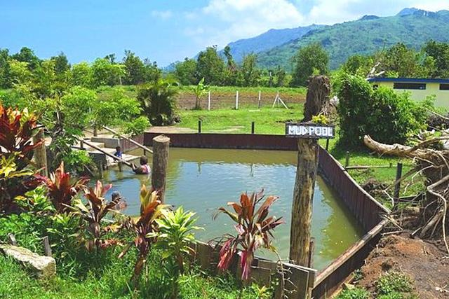 画像: 現地ではマッドプールと呼ばれている泥温泉(弊社スタッフ撮影)