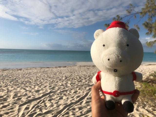 画像: 【ニューカレドニア】南太平洋の宝石箱 イルデパンの魅力