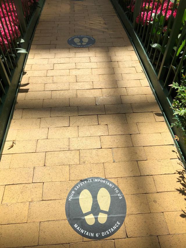 画像: 足元にはソーシャルディスタンスを保つための印が(現地ガイド撮影)