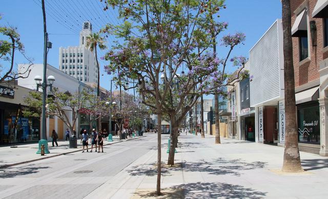画像: サンタモニカ「サード・ストリート・プロムナード」ジャカランダの様子/現地スタッフ撮影(6月14日撮影)