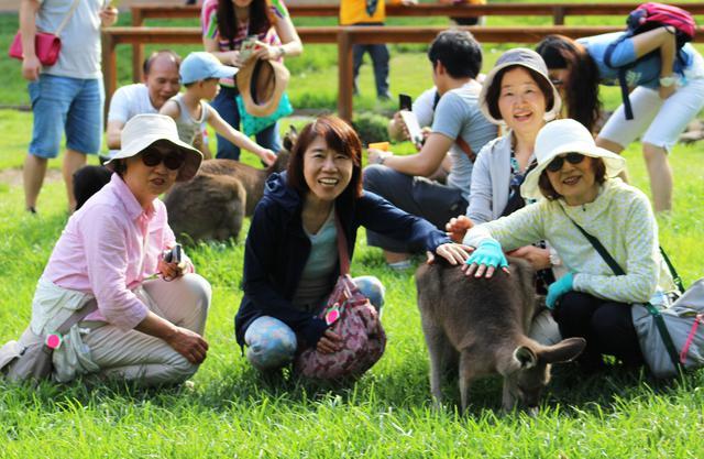 画像: 弊社ツアー参加のお客様:動物とふれあい体験(弊社添乗員撮影)