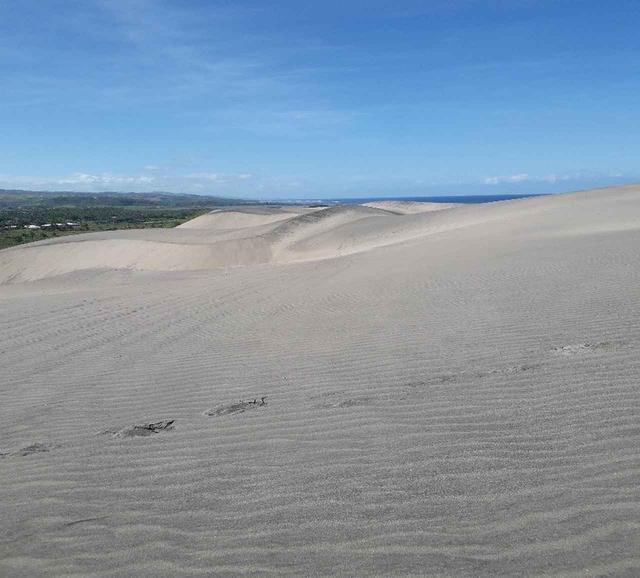 画像: 雄大な景色が広がるシンガトカ砂丘(7月2日撮影)