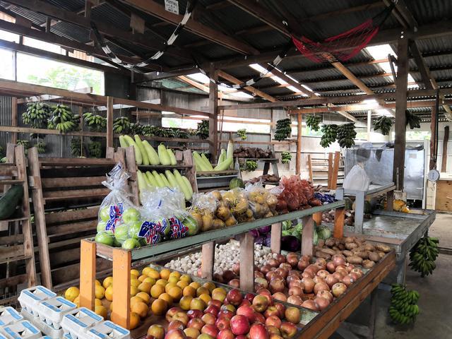 画像: コロニア(ポンペイ島)の市場 (クラブツーリズムスタッフ撮影)