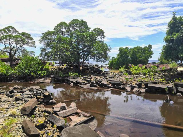 画像: 植物に飲み込まれた遺跡。奥には太平洋が見える (クラブツーリズムスタッフ撮影)