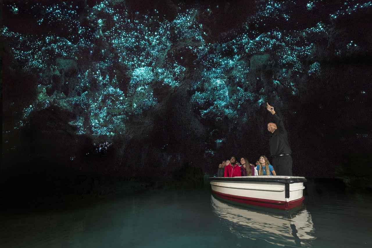 画像: ワイトモ鍾乳洞/イメージ ※土ボタルは野生動物のためご覧いただけない場合がございます