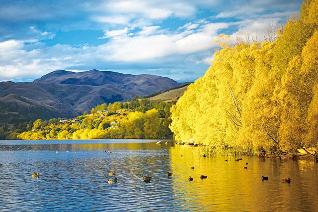 画像: ヘイズ湖の黄葉(イメージ)