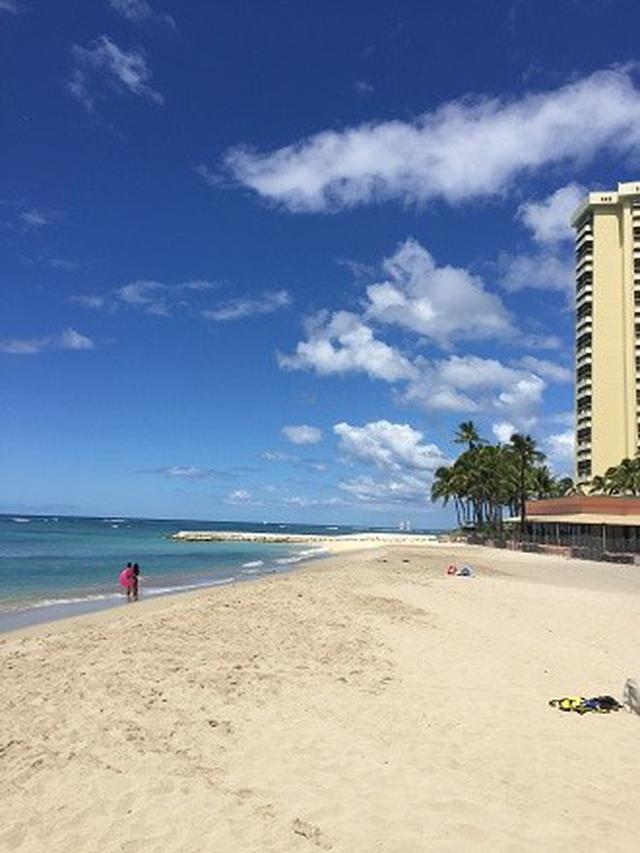 画像3: 【コロナ後現地状況・ハワイ】<9月28日時点>★随時更新