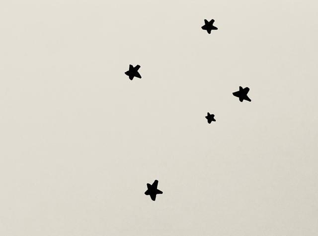 画像: こちらのイラストをご覧ください。真ん中の小さなひとつも入れて、この5つが「南十字座」です。(手描きイラスト)