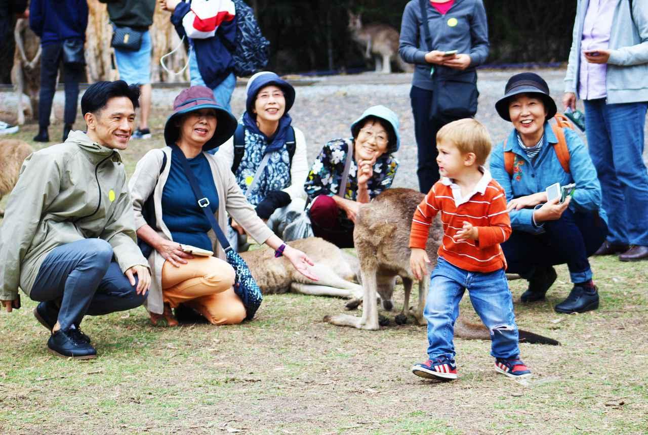 画像: 動物園 年齢問わず、童心にかえって楽しめます♪