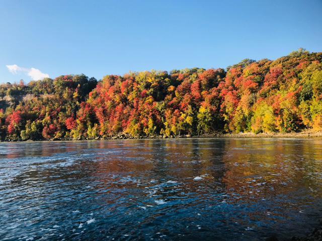 画像: ワールプールの紅葉/10/10撮影©Showflex