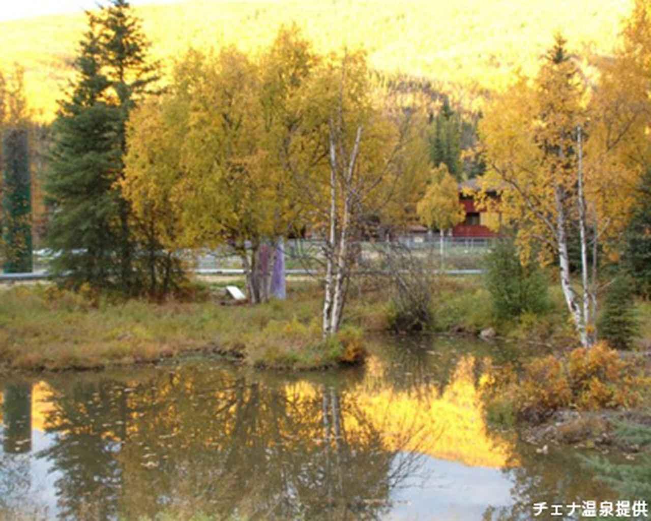 画像: チェナ温泉の黄葉(チェナ温泉提供・イメージ)